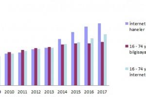 Türkiye'de 2017 İnternet Kullanım Oranları