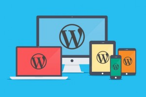 Wordpress Hakkında Sıkça Sorulan 5 Soru
