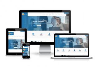 Hazır Web Sitesi - Ladin