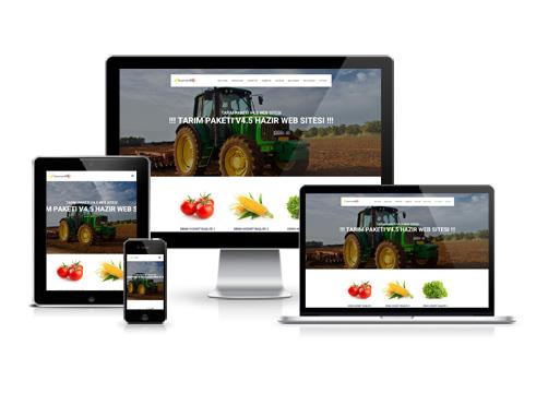 Hazır Web Sitesi - Başak