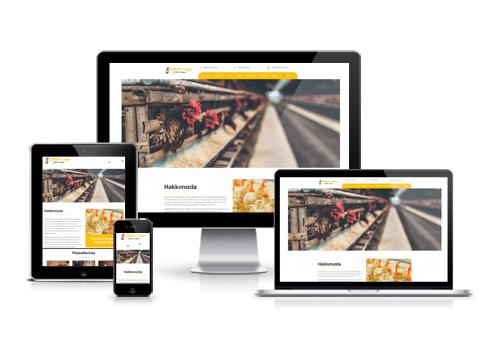 Hazır Web Sitesi - Ferik
