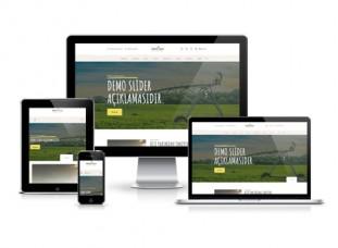 Hazır Web Sitesi - Servi