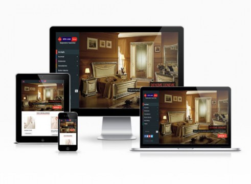 hazır internet sitesi örnekleri