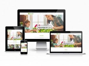 Hazır Web Sitesi - Çınar