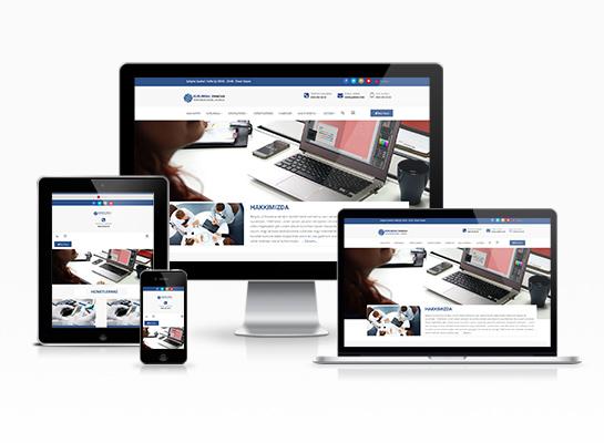 Hazır Web Sitesi - Ortanca