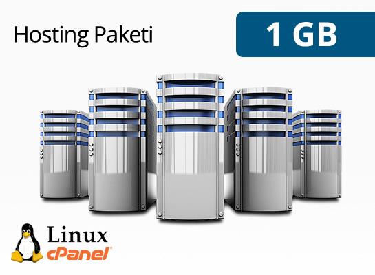 1 gb hosting