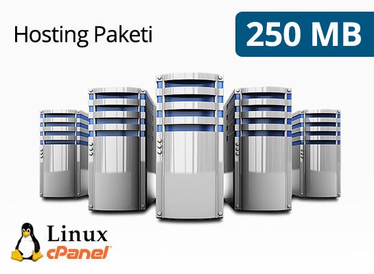 Hosting Paketi 250 MB