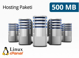 Hosting Paketi 500 MB
