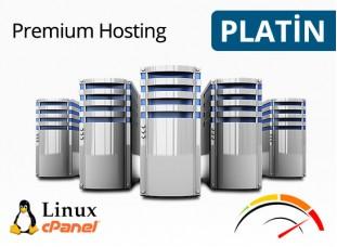 Platin Hosting Paketi (Aylık)