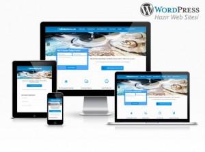 Wordpress Halı Yıkama Firma Sitesi